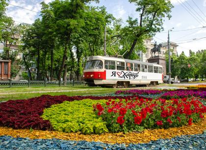 Харьков накануне лета (ФОТО)