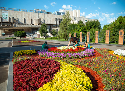 В саду Шевченко создают новые клумбы с лебедями, маками и яркими узорами (ФОТО)