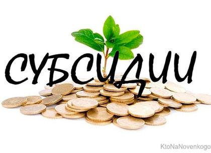 В Украине снова изменят правила выплаты субсидий
