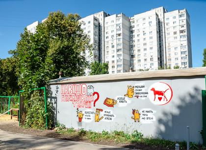 На улице Библика появилось граффити о стерилизации животных (ФОТО)