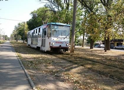 Трамваи 8-й и 27-й сегодня на три часа изменят маршрут