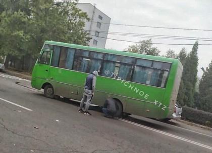 ДТП: маршрутка сбила человека (ФОТО, Обновлено)