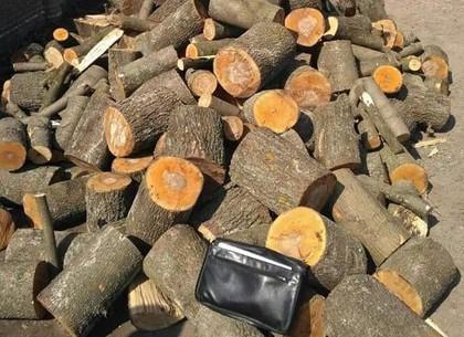 У пенсионерки украли деньги за дрова