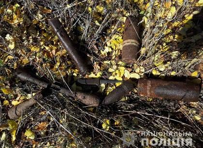 Под Харьковом искали грибы - нашли снаряды (ФОТО)