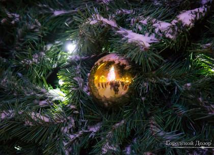 В новогоднюю ночь градус повысится: прогноз погоды и магнитных бурь в Харькове на праздник