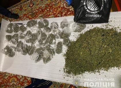 Наркоманы накопили 8 килограмм травки (ФОТО)