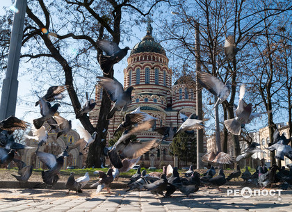 Прогноз погоды и магнитных бурь в Харькове на четверг, 26 марта