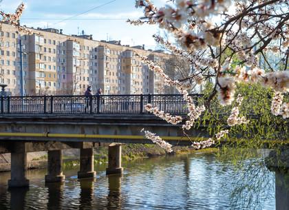 Харьков в начале апреля (ФОТО)