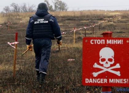 Харьковские курсанты приступили к поиску мин «под прицелом» видеокамер профильного министерства (ВИДЕО)