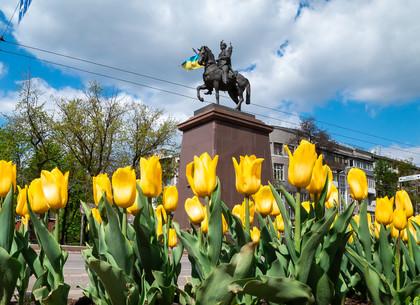 Цветущий Харьков в конце апреля (ФОТО)