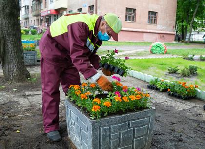 Как приводят в порядок дворы в Харькове (ФОТО)