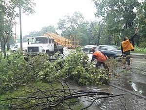 На Харьковщине объявили штормовое предупреждение