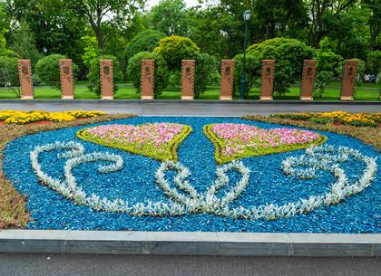 На Аллее звезд в саду Шевченко коммунальщики создают необычные клумбы (ФОТО, ВИДЕО)