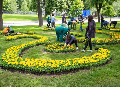 На проспекте Независимости в Харькове высадили десятки тысяч цветов (ФОТО)