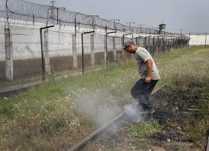 Сторожевые псы и охрана покровской колонии были подняты по сигналу «побег заключенного» (ФОТО)