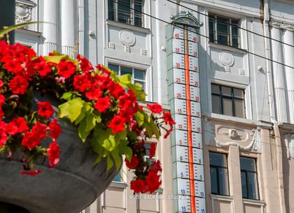 Прогноз погоды и магнитных бурь в Харькове на вторник, 28 июля