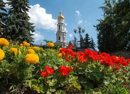Прогноз погоды и магнитных бурь в Харькове на пятницу, 31 июля