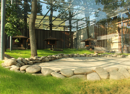 В зоопарке завершили строительство необычного жилья (ФОТО, ВИДЕО)