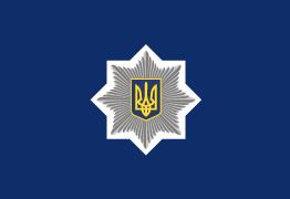Хулиганство на Полтавском Шляхе: информация полиции