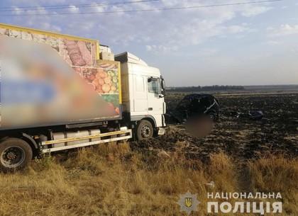ФОТО: Лобовое столкновение под Харьковом: погиб водитель Нивы (МВС)