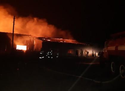 ФОТО: 8 нарядов спасателей на спецтехнике ликвидировали масштабный пожар на золочевкой «лесопилке» (ГСЧС)