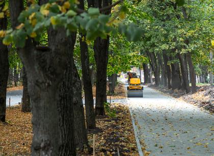 ФОТО: Парк Зеленый гай на реконструкции. Подробности проекта (РЕДПОСТ)