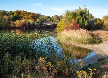 ФОТО: Осень в Журавлевском гидропарке (РЕДПОСТ)