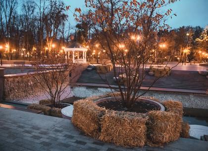 ФОТО: В саду Шевченко готовятся к зиме (РЕДПОСТ)