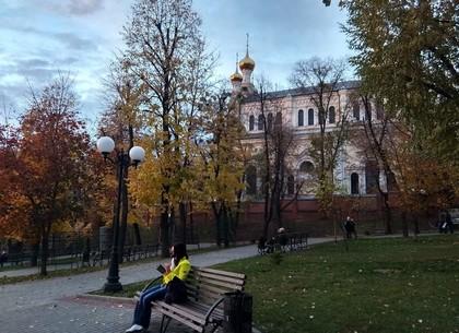Прогноз погоды и магнитных бурь в Харькове на четверг, 19 ноября (РЕДПОСТ)