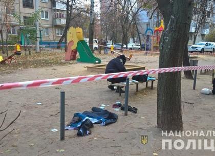 Взрывы на Гагарина: бросивший гранаты задержан (ГУНП)