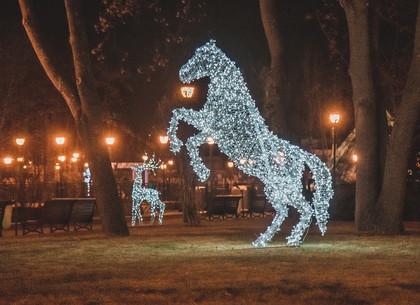 ФОТО: Светящиеся инсталляции в саду Шевченко РЕДПОСТ