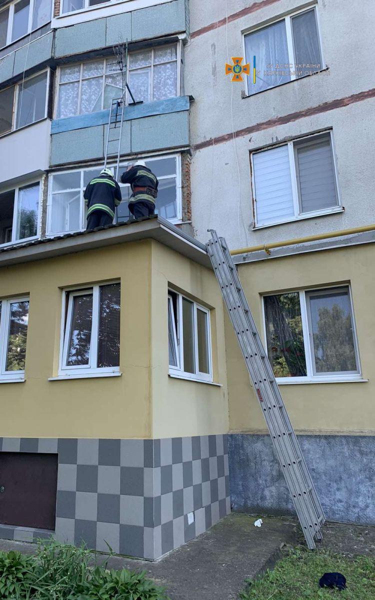 Скорая вызвала спасателей, чтобы попасть в квартиру парализованной женщины под Харьковом