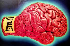 день бокса и день мозга