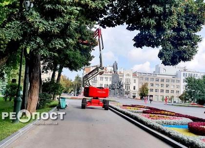 Как выглядит сад Шевченко перед Днем города (видео)