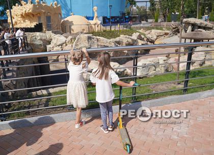Как выглядит Харьковский зоопарк после реконструкции (фото)