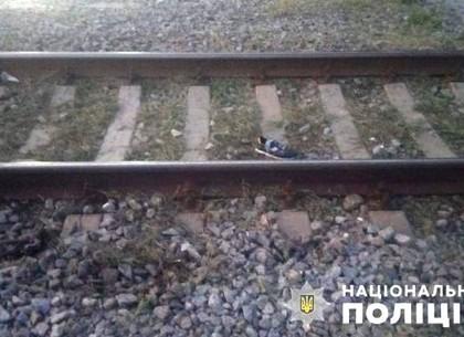 Кровь на рельсах: стало известно, почему погиб мальчик под Харьковом (фото)