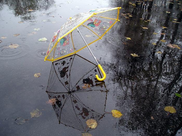 осень дождь листик зонт в луже